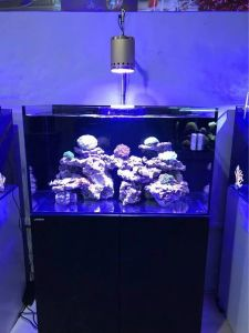 New Design Full Spectrum High Quality Dimmable LED Aquarium Light for Coral Reef pictures & photos