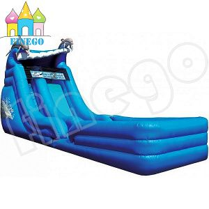 Inflatable Slide Giant Inflatable Water Slide for Adult pictures & photos