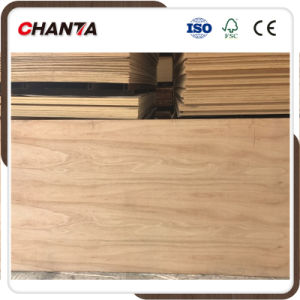 Marine Plywood with High Quality for Europe pictures & photos
