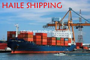 Good Price LCL Shipping Shenzhen to Dublin