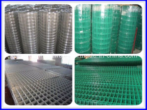 Electro Galvanized Welded Wire Mesh /Welded Iron Wire Mesh pictures & photos