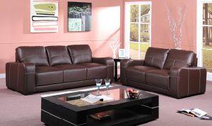 Leather Sofa (HAJ-96230#)