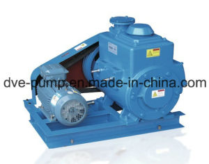 Dry Rotary Vane Vacuum Pump Directly Linked Structure pictures & photos