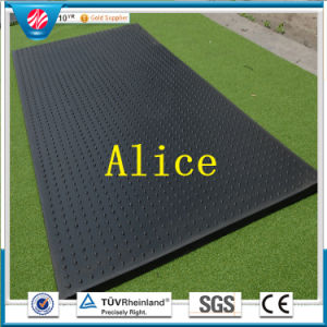 Animal Rubber Matting/Stable Rubber Mat/Cow Stable Rubber Mat pictures & photos