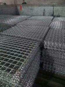 Stainless Steel Crimped Wire Mesh for Decorative Mesh and Filter Mesh pictures & photos