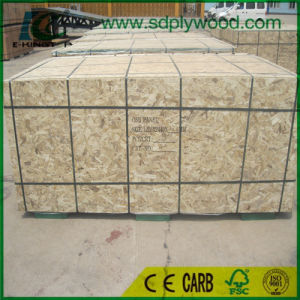 High Quality and WBP Glue OSB Board for Russia Market pictures & photos