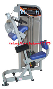 Body Building Eqiupment, Hammer Strength, Horizontal Calf (PT-512) pictures & photos