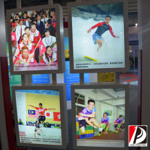 Solvent Printing Coated Backlit Banner (LIT-09) pictures & photos