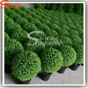 2016 Professional Wholesale Hot Sale Artificial Ball Plant Bonsai pictures & photos