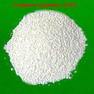 High Quality Agriculture Fertilizers Sop White Powder / Potassium Sulfate pictures & photos