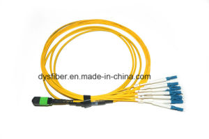 MPO Om3 4ft Fiber Optic Patch Cord pictures & photos