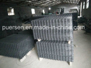 75X750mm Reinforced Steel Mesh / Welded Wire Mesh Panel pictures & photos