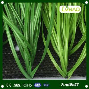 Hot Sale Football Field Artificial Grass pictures & photos