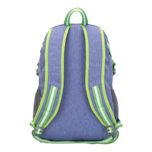 Taikes Purple Student Hiking Camping Backpack (201619008#) pictures & photos