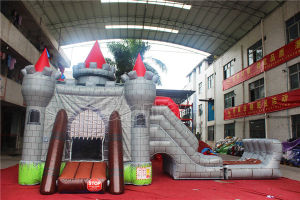 Inflatable Castle Bounce House with Water Slide Chb1134 pictures & photos