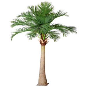 Garden Home Decoration Wholesale Plastic Artificial Coconut Tree