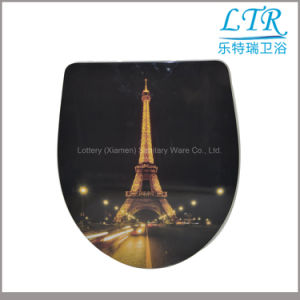 Printed Universal Toilet Seat with Stainless Steel Hinges pictures & photos