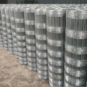Galvanized Grassland Fence/ Field Fence/ Farm Fence/ Cattle Fence pictures & photos