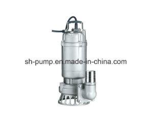 Wq Transferring Sludge Pump pictures & photos