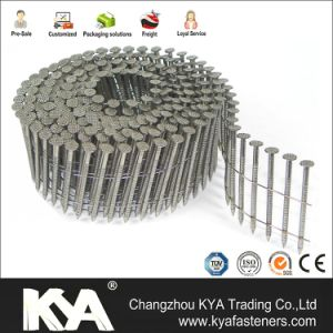 Galvanized Pneumatic Screw Shank Pallet Coil Nails pictures & photos