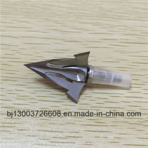 Customized Arrow Head with Stainess Steel pictures & photos