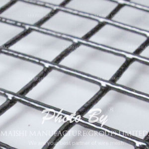 Black Welded Wire Mesh Fence pictures & photos