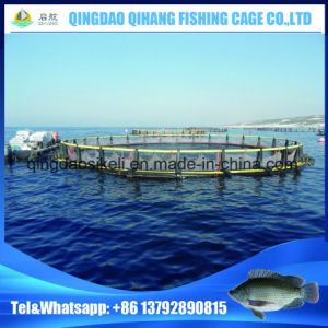 HDPE Fish Cage Fish Farming Cage for Deep Sea Aquaculture pictures & photos
