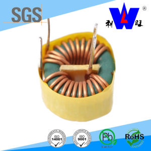 Toroidal Choke Common Mode Inductor with RoHS pictures & photos