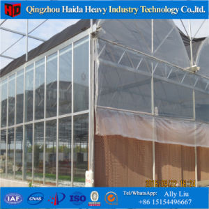 Agticulture Plastic Glass PC Vegetable Greenhouse for Sale pictures & photos