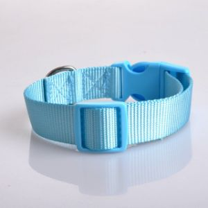 Promotion Seven Color Thicken Nylon Simple Pet Collar pictures & photos