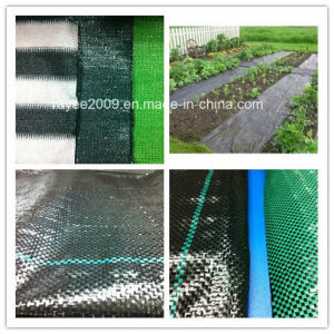 Ideal Solution Controlling PP Woven Weed Mat pictures & photos