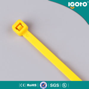 Nylon Cable Tie, PA66 Nylon Cable Tie pictures & photos
