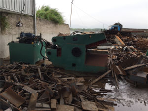 Q43-1000 Hydraulic Scrap Metal Shear Machine pictures & photos