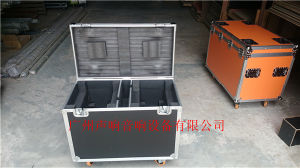 LED Flight Case for PAR Can Lighting pictures & photos