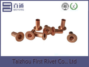 4.2X9mm Copper Plated Flat Head Full Tubular Steel Rivet pictures & photos