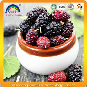 Plant Extract Mulberry Extract Anthocyandins for Health Care pictures & photos