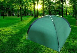 Non-Woven Pop up Garden Cover pictures & photos