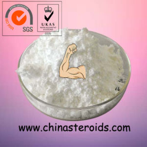 Bodybuilding Anabolic Steroids Testosterone Sustanon 250 Powder pictures & photos