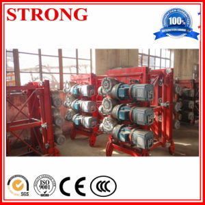 Construction Hoist Spare Parts-Driving Device, Reducer, Motor pictures & photos