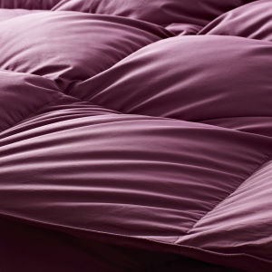 Luxury Bedding Cover 800 Filling Power White Goose Down Quilt pictures & photos