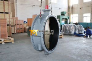 Dn1400 56inches Double Flanged Butterfly Valve with C95400 Disc (CBF01-TF01) pictures & photos