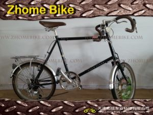 Bicycles/Road Bike/Racing Bike/Small Wheel/Velo Bike Zh15rb01 pictures & photos