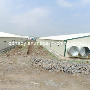 Prefab Poultry Farm House Construction pictures & photos