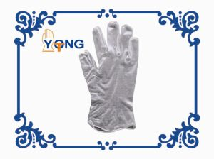 Disposable Clear Powdered Vinyl Gloves