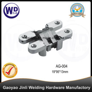 Zinc Alloy Concealed Gate Door Hinge, Cross Hinge pictures & photos