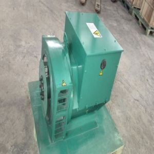 Brushless Self-Excited Alternator for Diesel Generator Set pictures & photos
