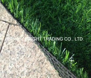 25mm Leisure Landscape Artificial Grass pictures & photos