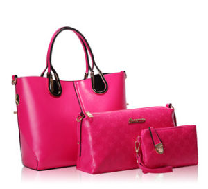 2015 Fashionable Brand Name Lady Handbag for 3PCS (XM001) pictures & photos