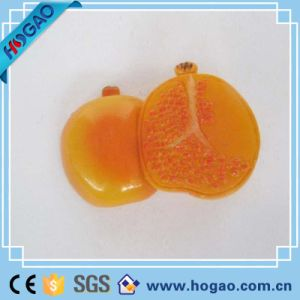 Orange Fruit Collection Handmade Resin 3D Fridge Magnet pictures & photos