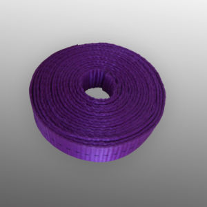 Wholesale Polyester Webbing, Webbing pictures & photos